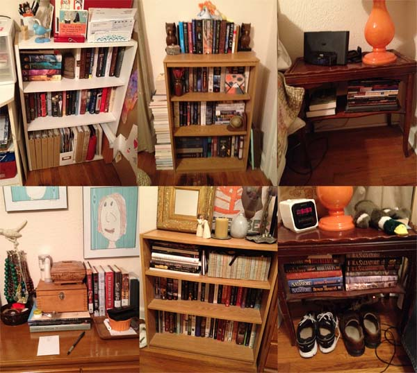 be AUDacious bookshelf organization