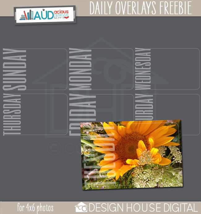 An-dhd-dailyoverlay-preview